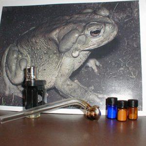 Buy toad venom online